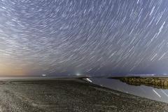 Scorton-Creek-Star-Trais-1432_