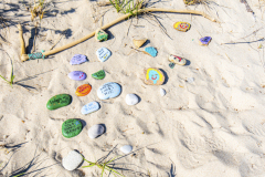 Beach-Plumb-Flower-3416-Edit-2
