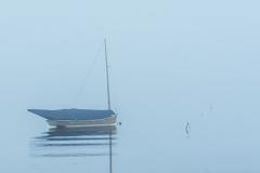 Cotuit-Fog-4903